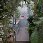 Botanischer-Garten-105